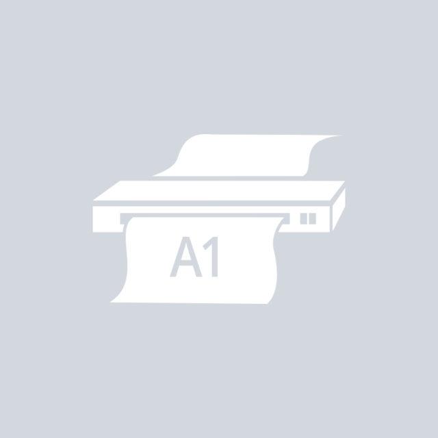 Сканирование широкоформатное А1
